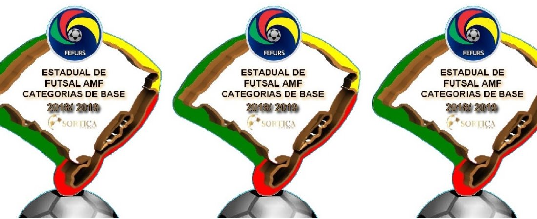 CAMPEONATO ESTADUAL DE FUTSAL AMF CATEGORIAS DE BASE 2018/2019
