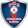 FEDERAÇÃO MINEIRA DE SORVEBOL