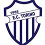 E.C. TORINO DA RESTINGA - FUT7 SUB 15