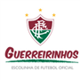 GUERREIRINHOS  CESG-SUB-15