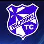 PALADINO TNIS CLUBE SUB 7 OURO